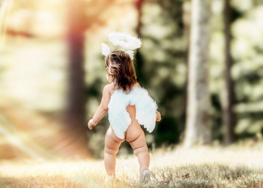 best children portrait of little angel walking in the forest